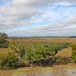 Marsh View Seagrass Lane Wild Dunes Charleston Coast