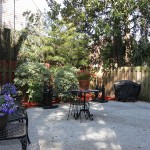 historic charleston patio