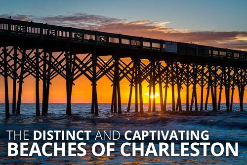 The Distinct and Captivating Beaches of Charleston