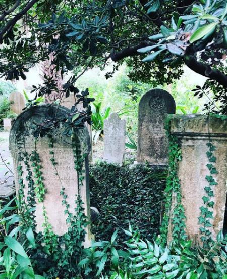 Charleston's Cemeteries