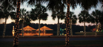 Holiday Festival of Lights @ James Island County Park