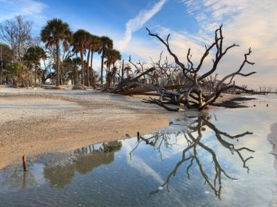 Charleston SC beaches attractions